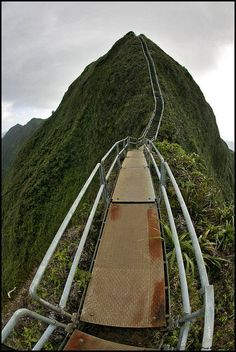 Haʻikū Stairs, also known as the Stairway to Heaven or Haʻikū Ladder, is a steep hiking trail on the island of Oʻahu. Been to O'ahu many many times and have yet to visit the Stairway to Heaven Dream Vacations, Vacation Spots, Stairway To Heaven Hawaii, Places To Travel, Places To See, Places Around The World, Around The Worlds, To Infinity And Beyond, Future Travel