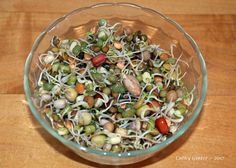 I also make a peanut, bean, pea and lentil sprouting mix that has a great, nutty flavor ... perfect raw or lightly steamed for barely a minute ~
