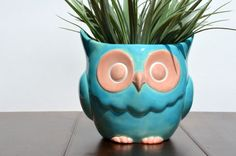 {Ceramic Owl Planter} love the colours!