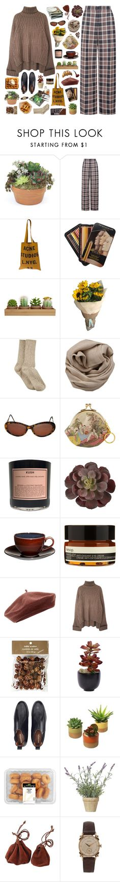 """""""the artist"""" by child-of-the-tropics ❤ liked on Polyvore featuring Tory Burch, Acne Studios, HUE, Brunello Cucinelli, Yves Saint Laurent, Boy Smells, Mikasa, Aesop, Accessorize and Pier 1 Imports"""