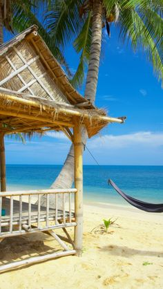Beach Bungalow in Paradise - Explore the World with Travel Nerd Nici, one Country at a Time. http://TravelNerdNici.com