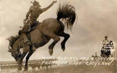 Image result for az cowpunchers reunion ranch rodeo photos