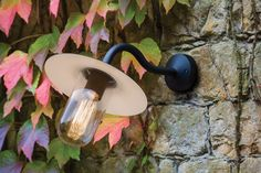 Buy the Dafni Exterior Wall Light Black by Astro Lighting and more online today at The Conran Shop, the home of classic and contemporary design Front Door Lighting, Outdoor Wall Lighting, Outdoor Walls, Interior Lighting, Diy Aquarium, Luminaire Mural, Luminaire Design, Gomme Laque, Astro Lighting