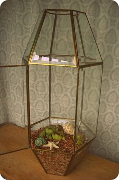 Upcycled 80's Chandelier to fancy geometric terrarium.  I want closed terrariums in my room...