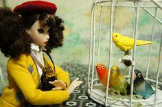 わが家のもふもふペット | Flickr - Photo Sharing!