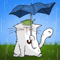 chat au parapluie façon Totoro / Cat and umbrella