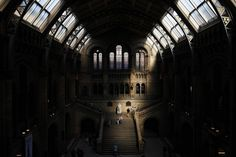 Natural History Museum, South Kensingon, London