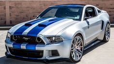Sweet Silver and Blue Mustang