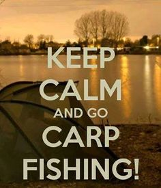 Fishing Republic stock hundreds of Carp Rods from big brand names such as Daiwa, Greys, Sonik, Fox, Chub and Trakker! Carp Rods, Carp Fishing Rods, Fly Fishing, Sea Angling, Bowfishing, Just Do It, Keep Calm, Fresh Water, Adventure