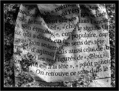 Le sens des mots Sheet Music, Meanings Of Words, Language, Music Sheets