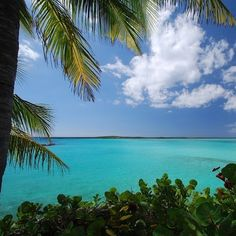 Coconut Fragrances can take you on an exotic trip. I Need Vitamin Sea, Fragrances, Exotic, Coconut, Canning, Beach, Water, Outdoor, Gripe Water