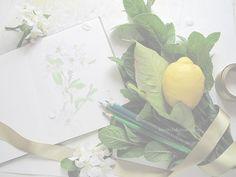 drawings by Mari Mochizuki, April 2015/スタジオから:季節の便り 2015年4月 姫林檎の花、庭の植物の素描、プレゼントでいただいたレモン、庭の植物を用いて構成 #望月麻里 mochizukimari.com