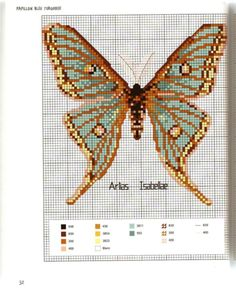 Gallery.ru / Photo # 29 - MARABOUT Insects - tatasha Cross stitch scientific diagrams insects labelled victorian insect collection