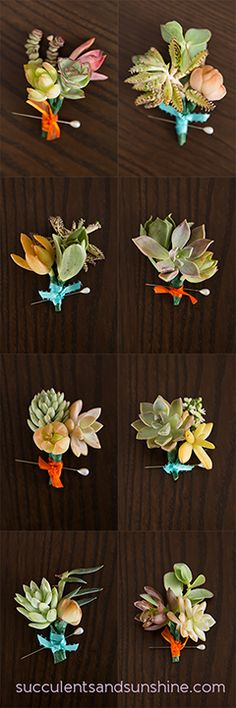 Succulent Boutonniere, love that these are sculptural and masculine for the guys. Also I love the Tiffany blue ribbon wrap for a little added color. That would match back the the wraps on the bouquet Cheap Wedding Flowers, Floral Wedding, Wedding Bouquets, Cheap Flowers, Yellow Wedding, Wedding Centerpieces, Succulent Boutonniere, Succulent Bouquet, Boutonnieres
