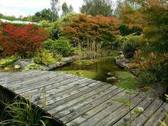 Birkheads Secret Garden Tanfield uk
