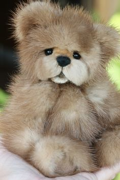 The cutest teddy bears i ever saw in my life! http://www.kimbearlys.com/