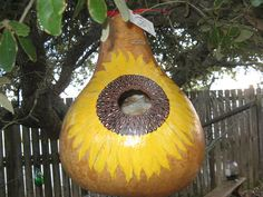 Sunflower Birdhouse Gourd