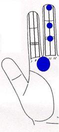 Tratamiento Ciclo mentrual irregular a través Sujok 3 Durante mentrual sangrado Terapia del color  Línea Nº 11 - El punto no. 1 - Azul. Línea Nº 11 - El punto no. 6 - azul. Línea Nº 11 - El punto no. 4 - azul. Muladhar chakra - Círculo azul