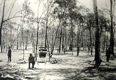 The Gatton Murders. An unsolved triple homicide that occurred a mile from the town of Gatton, Queensland, Australia. Michael Murphy and his sisters Norah and Ellen were killed on December 1898 while returning home from a cancelled dance. Michael had been shot and bludgeoned, Norah strangled and bludgeoned, and Ellen was bludgeoned twice. Police suspected a man name Thomas Day, a laborer who lived 900 feet away from the murder site. He enlisted in the military and then disappeared.
