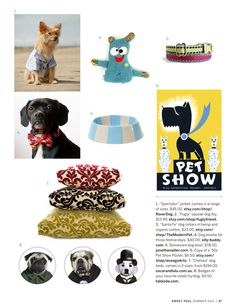 Love the pet show poster