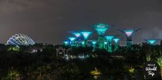 Singapur Gardens by the Bay bei Nacht