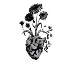 Anatomical heart with the girls birth flowers come out of it would be an awesome. - Anatomical heart with the girls birth flowers come out of it would be an awesome tattoo! Celtic Tattoos, Star Tattoos, Cool Tattoos, Tatoos, Wing Tattoos, Tattoo Symbols, Henna Tattoos, Heart Painting, Painting Art
