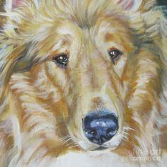 Collie Close Up Painting by L.A. Shepard