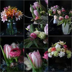 Sata Sävyä Vihreää: Helmikuun kukkaset