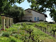 Castoro Wines Spring Resort, California, Wineries, Hot Springs, Tours, Vacation, House Styles, City, Beach