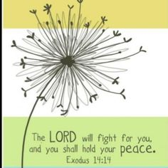 Exodus 14:14 -- the more I focus on Him, the more I am at peace
