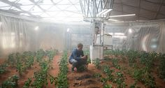 """Andy Weir's """"The Martian"""" tells the story of Mark Watney, a NASA astronaut stranded on Mars. NASA is already working on some of the technologies he uses to try to stay alive. Matt Damon, Plants On Mars, Mark Watney, Agriculture, Farming, Mission Mars, Biology Projects, New Mummy, Tim Beta"""