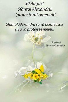Dandelion, Facebook, Day, Flowers, Plants, Dandelions, Plant, Taraxacum Officinale, Royal Icing Flowers