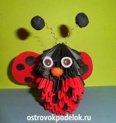 """""""Ladybird"""" in the art modular origami"""
