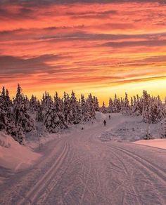 Christmas morning light