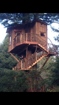 animal planets treehouse masters premieres this month architizer treehouses pinterest planet s