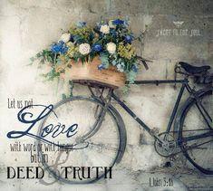 .flores y bici