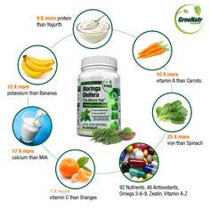 Pure Moringa Oleifera Leaf Extract Capsules * Premium Green Superfood