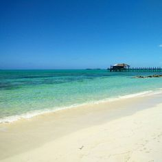 Just your typical March day at #smallhopebaylodge #Andros #Bahamas