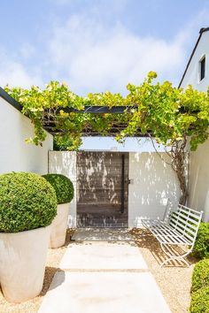 Large concrete pavers lead past a white metal bench to a gray plank wooden French door positioned beneath vines covering a black pergola. Large Concrete Pavers, Concrete Fire Pits, Concrete Fence, Covered Patio Design, Covered Pergola, Outdoor Patio Designs, Outdoor Decor, Outdoor Spaces, Outdoor Living
