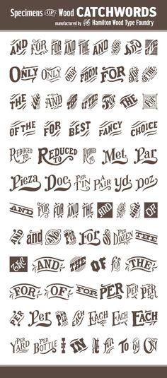 Beautiful Catchwords - Great Design Inspiration