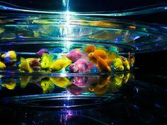 【画像 4/19】5千匹の金魚が泳ぐ「アートアクアリウム」大奥やキモノなど和の大作を公開 | Fashionsnap.com