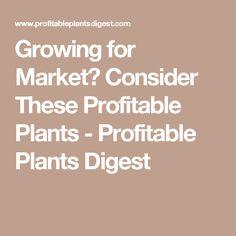 Growing For Market Consider These Profitable Plants Digest