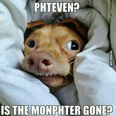 Phteven, is the monphter gone?
