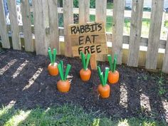 Easter+outdoor+Decor+ideas+for+rabbits.+