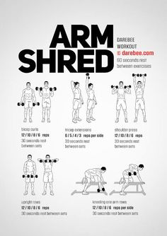 Arm Shred Workout Source by Shred Workout, Bi And Tri Workout, Dumbell Workout For Arms, Arm Workout Men, Workout Routine For Men, Gym Workout Tips, Strength Workout, Arm Exercises With Weights, Fitness Studio Training