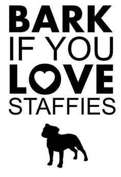 Love my staffies Stafford Dog, Stafford Terrier, Baby Dogs, Dogs And Puppies, Doggies, I Love Dogs, Puppy Love, Pit Dog, Bullying Quotes