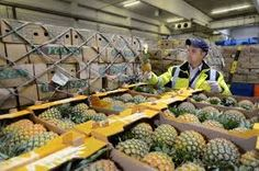 Image result for quality checking perishables