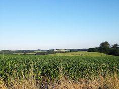 Rheinisch Bergisches Land on Flickr.Sommerabend im Rheinisch Bergischen Land.