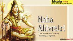 Maha Shivaratri - #Lord #Shiva's Favourite day