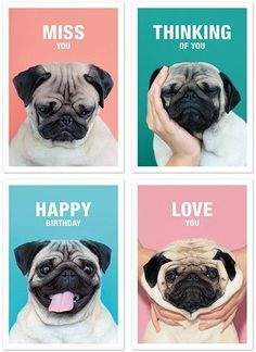 Set of 4 Greeting Cards